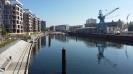 MT-Hafen_51