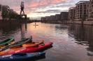 Hafen - Saisonrückblick 2019